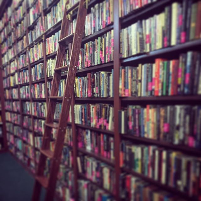 Heaven. 📖🤓 #nerdalert #bookworm #📚🐛 #ladder #bookstore #libraryladder