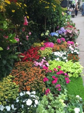 PSA: The FlowerDistrict