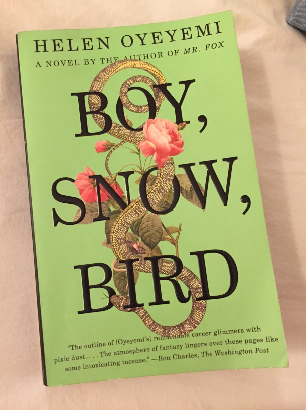 boy snow bird