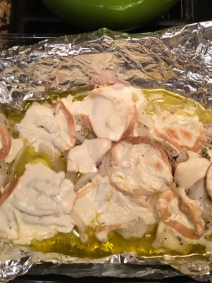 turkey cutlets with smoked mozz4