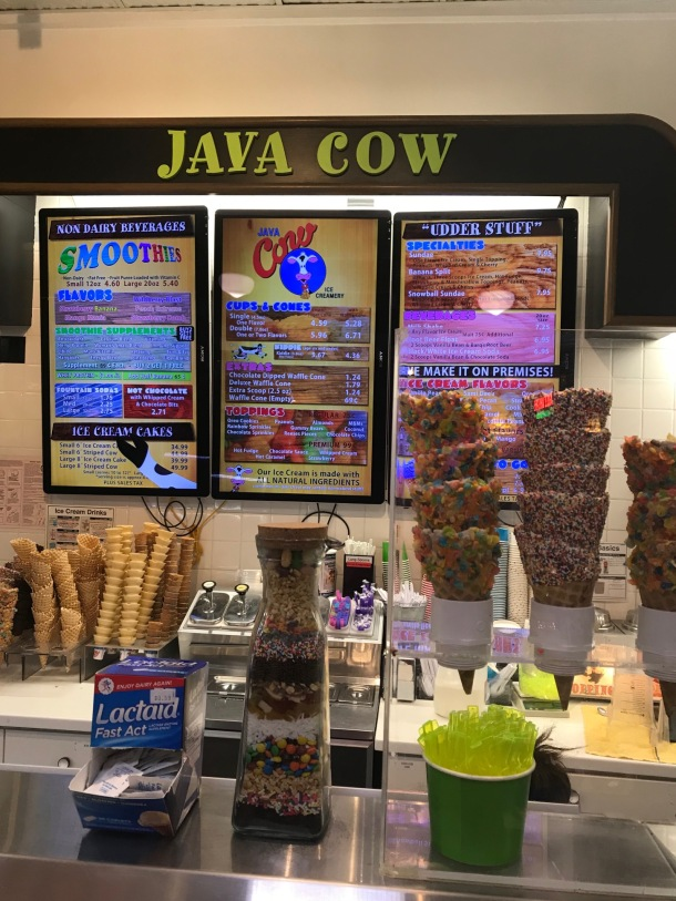 java cow3