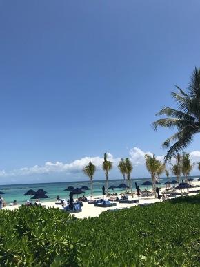Travel Journal: Myakoba/Playa delCarmen