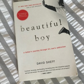 Book Review: BeautifulBoy