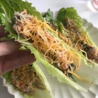 Crunchy Tuna Salad Cups