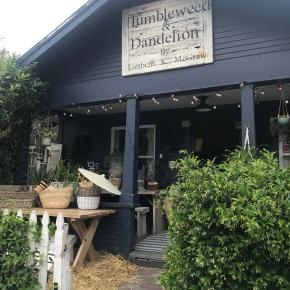 PSA: Tumbleweed andDandelion
