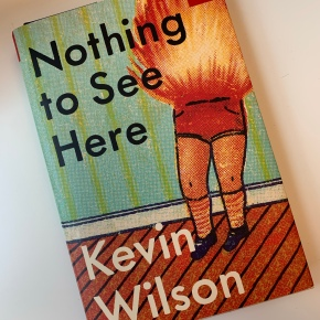 Book Review: Nothing to See Here